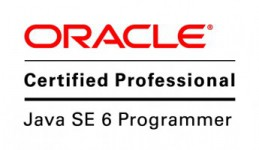 Oracle logo 3